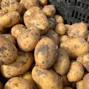 aardappelen bij sally