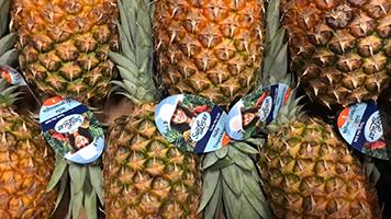 ananas online bestellen