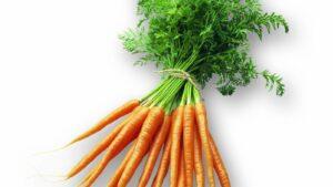 groente online