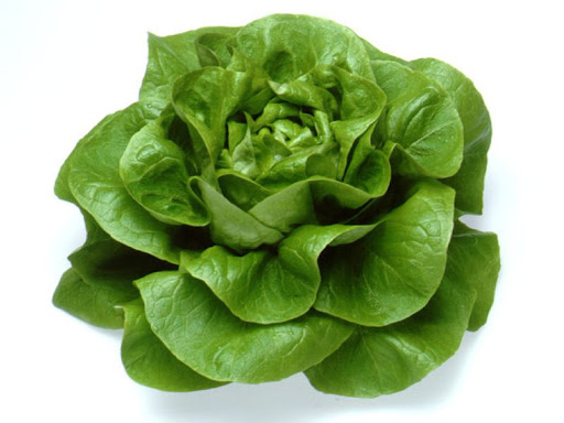 groente online bestellen