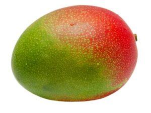 mango online bestellen