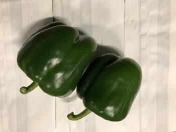 groene paprika