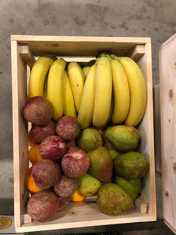 werkfruit sally 100 stuks