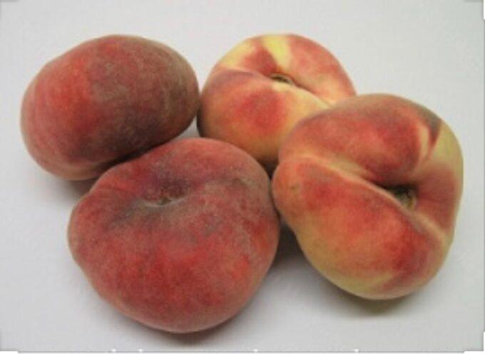 Wilde perziken bestellen bij Sally