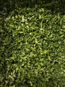 boerenkool gesneden per zak sally