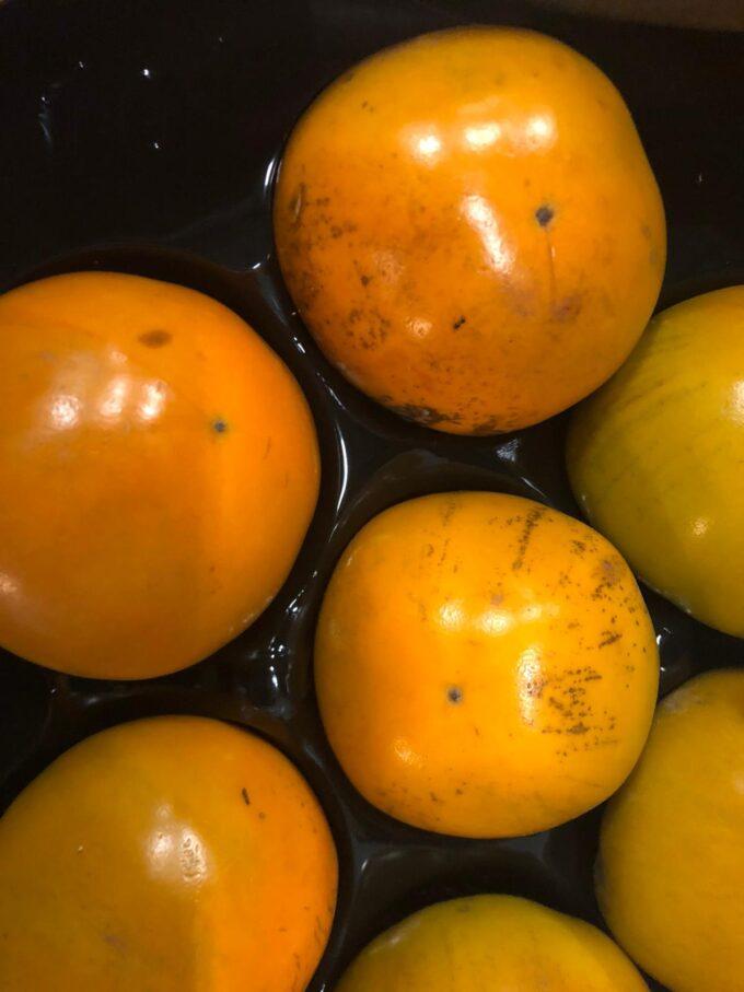 kaki fruit sally